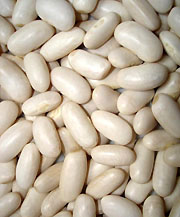 haricots-blancs-sport