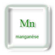 Manganèse et Sport