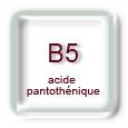 Vitamine B5 (acide pantothénique)