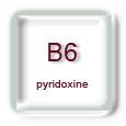 Vitamine B6 (pyridoxine, pyridoxal, pyridoxamine)