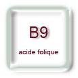 Vitamines B9 (folates, acide folique)