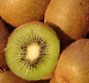 Fiche fruit : Kiwi