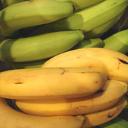 Fiche fruit : Banane