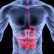 La Gastroentérite