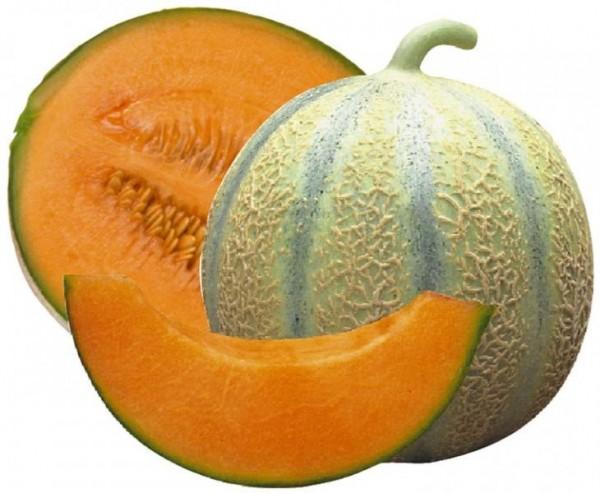 Melon et potassium