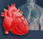 L'hypertrophie cardiaque