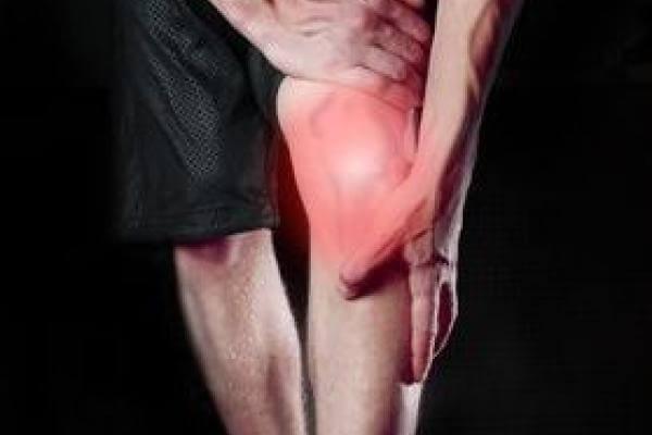 Les articulations et l'arthrose