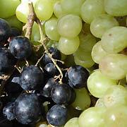 Boisson de récupération au jus de raisin