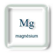 Minéraux : Magnésium / Mg