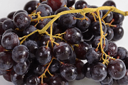 Le raisin et les bienfaits sur la sante