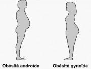 obesite2