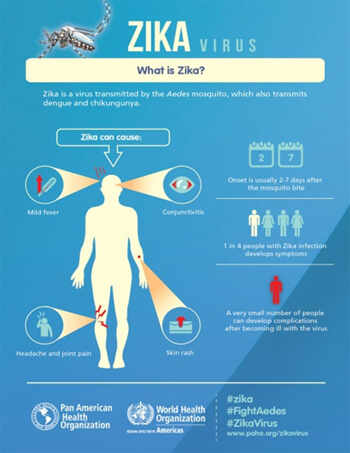 Virus Zika : symptômes