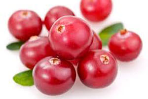 Cranberry ou canneberge