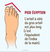 Pied égyptien
