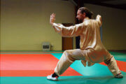 Tai-Chi (Taiji) : Willy Mangin
